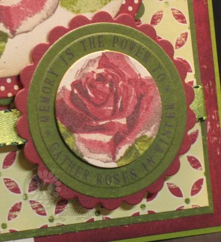 Winter Roses (2)
